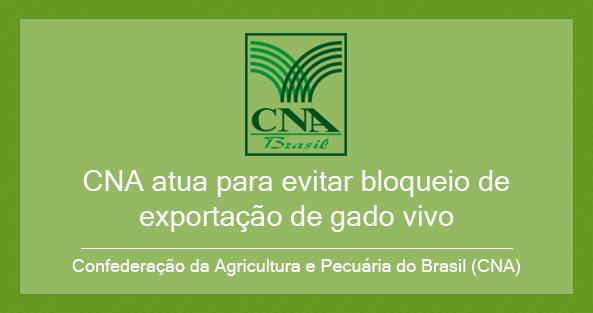 CNA atua para evitar bloqueio de exportação de gado vivo